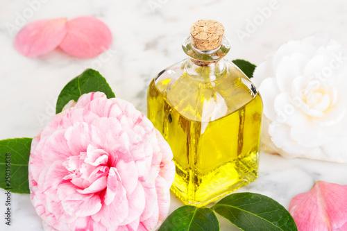 Fototapeta Camellia oil. Cammellia flower and oil bottle for beauty, skin care, wellness and medicinal purposes obraz