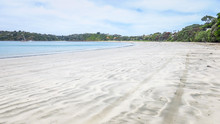 Visiting Waiheke Island Near Auckland, New-Zealand