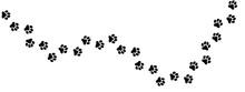 犬の足跡 (Paw Prints Of Do...