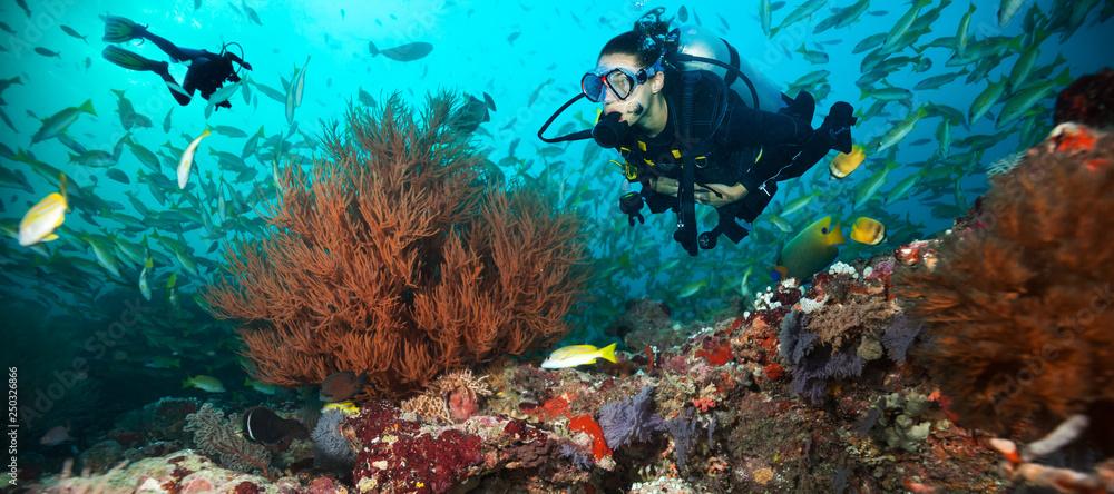 Fototapeta Young woman and man scuba divers exploring
