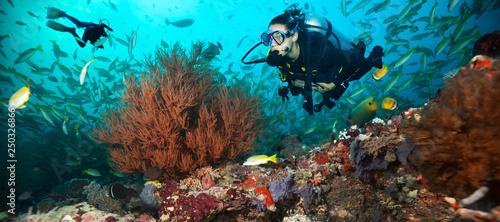 Fototapeta Young woman and man scuba divers exploring obraz