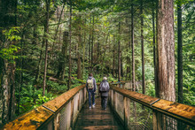 Canada Travel Tourists Walking In Vancouver Forest In Capilano Suspension Bridge Park, Tourism Attraction. Hikers In Rainforest In Fall Nature Landscape. British Columbia.