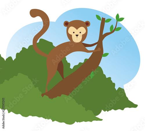 Poster Oiseaux, Abeilles monkey wild animal in the tree branch