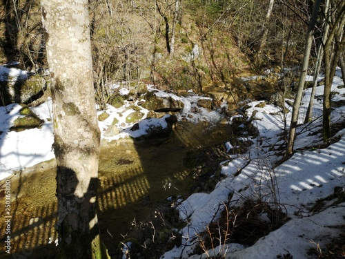 Fotobehang Bos rivier Wandern im Winter