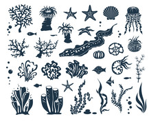Underwater World Design Elements Collection. Marine Wildlife Silhuettes Set. Seaweed, Corals, Shells And Fishes.