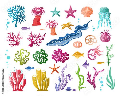 Foto Underwater world design elements collection
