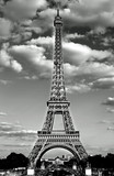 Fototapeta Wieża Eiffla - eiffel tower in Paris with Black and White effect and the white