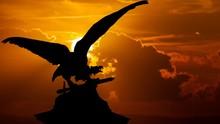 Turul Bird On The Royal Castle...