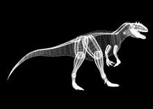 Dinosaurs Architect Blueprint