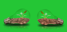 Small Seedlings In Two Bulbs On A Green Background With Energy-saving Concepts To Protect The Environment.