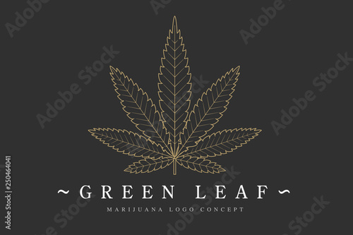 Cannabis marijuana hemp green leaf flat symbol or logo design Canvas Print
