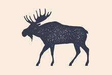 Moose, Wild Deer. Concept Desi...