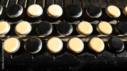 Vászonkép  Buttons bayan close-up.Key accordion close-up.