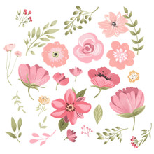 Cute Pink Watercolor Individual Flowers, Floral Elements
