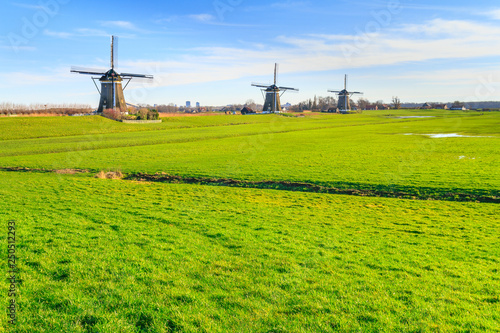 Foto auf AluDibond Pistazie Rural landscape - view of green meadow on background of the mills on a sunny day, the Netherlands