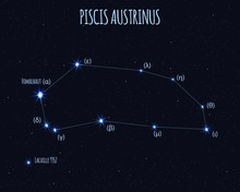 Piscis Austrinus (The Southern Fish) Constellation, Vector Illustration With The Names Of Basic Stars Against The Starry Sky
