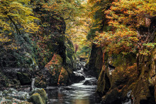 Fairy Glen Gorge Waterfall At Autumn In North Wales, UK