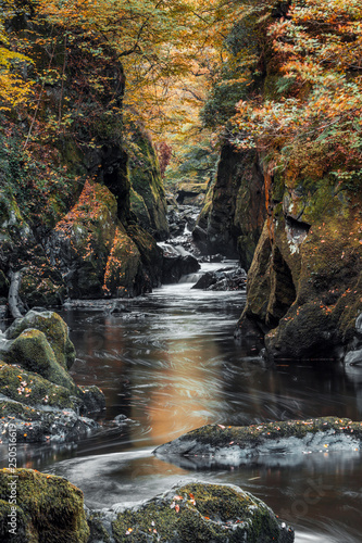 Fairy Glen Gorge Waterfall at Autumn in North Wales, UK Wallpaper Mural