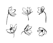 Set Of Hand Drawn Wildflowers. Outline Flower Plant Silhouette Brush Ink Painting. Black Isolated Vector On White Background