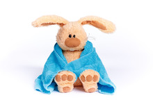 Soft Stuffed  Bunny In A Blue ...
