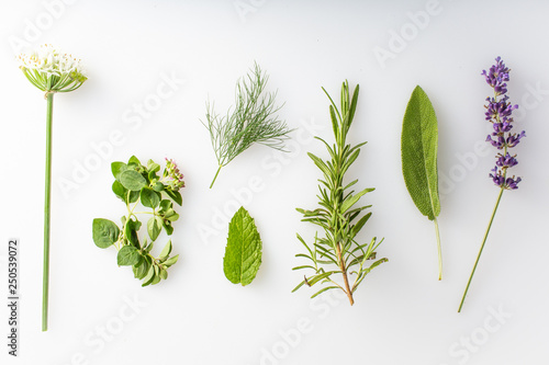 Fotografia  fresh herbs and spices on a white background