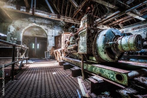 Fotomural  Generator rarea under an abandoned psychiatric hospital (demolished in 2015)
