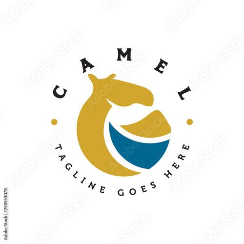 Fotografija geometric camel logo icon vector template