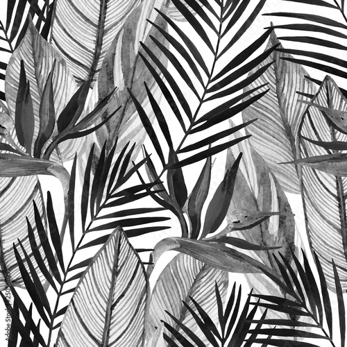 Poster Watercolor Nature Watercolor tropical seamless pattern with bird-of-paradise flower, palm leaves in black and white colors.