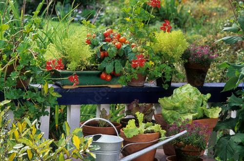 Leinwand Poster Légumes et plante aromatique sur un balcon