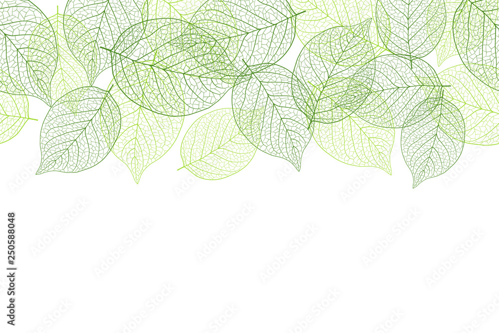 Fototapety, obrazy: Fresh green seamless background material