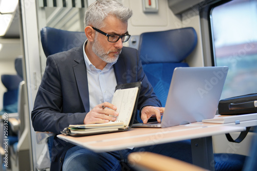 Garden Poster Mature businessman working on laptop while traveling in train