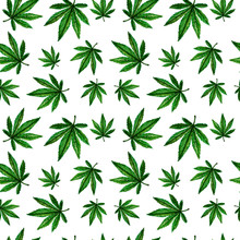 Seamless Pattern Of Cannabis Leaves. Watercolor Illustration. Legalization Of Marijuana.