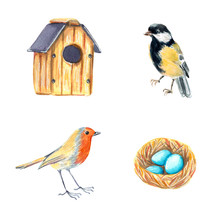 Clip Art Set With Bird House, Nest With Eggs, Titmouse And Robin, Hand Drawn Watercolor Illustration Isolated On White