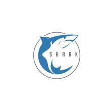 Shark Logo Vector In Circle Ne...