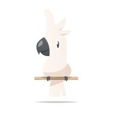Cartoon Cockatoo Vector Isolated Illustration