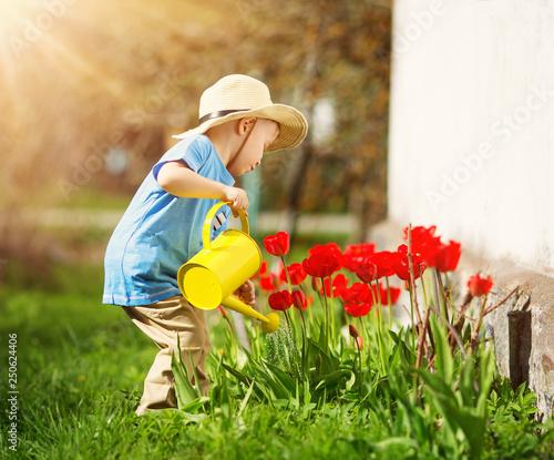 Fotografía  Little child walking near tulips on the flower bed in beautiful spring day