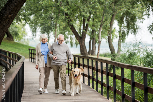 Obraz happy smiling couple walking with adorable dog in park - fototapety do salonu