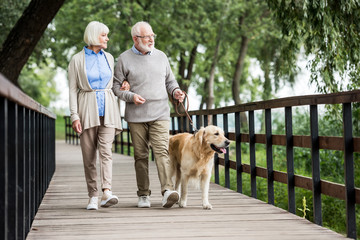 happy senior wife and husband walking with dog in park