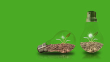 Small Sapling In Two Tubes On A Green Background With Energy-saving Concepts To Protect The Environment.
