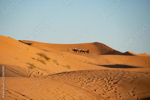 Photo  Hochzeits-Karawane in der marrokanischen Wüste