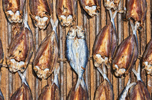Plenty Salted Fish, Cut Into Half And Lay Out For Drying On A Wooden Floor At The Market In Taytay, Palawan Province, Philippines
