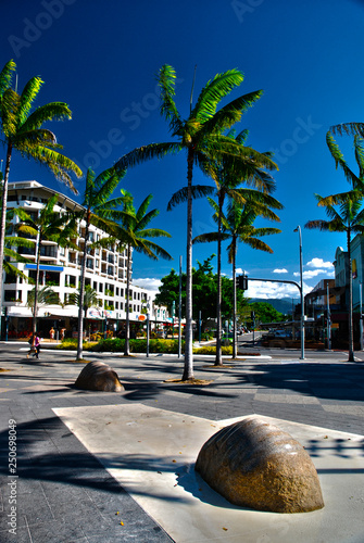 Palm trees on a sunny day in central Cairns, Australia Wallpaper Mural