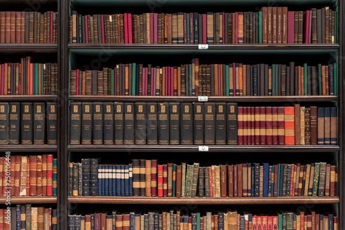 Fotografie, Obraz  Antique Books on Old Wooden Shelves