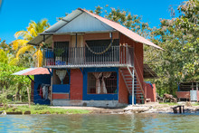 Costa Rica, Typical House On The River, In Tortuguero, With Cow In The Garden