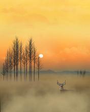 A Golden Sky, A Whitetail Deer...