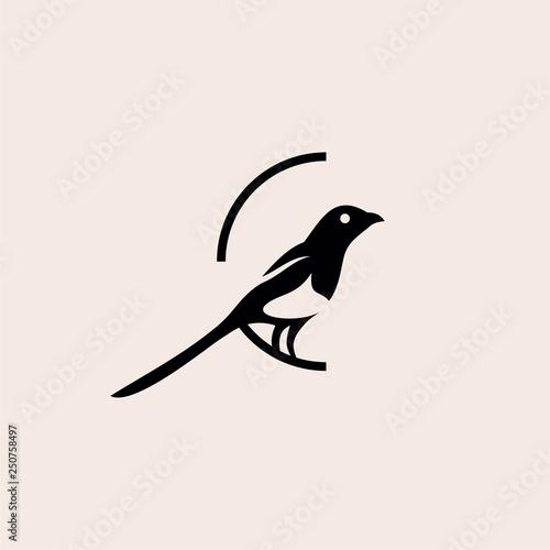 magpie bird logo vector illustration Fototapeta