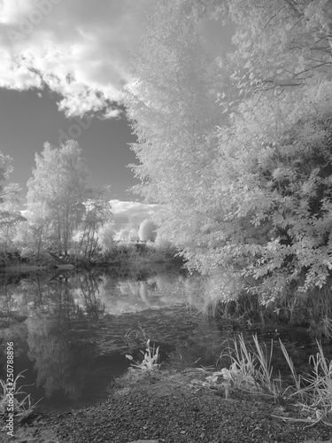 Foto auf Acrylglas Wald im Nebel Infra red photography IR photo