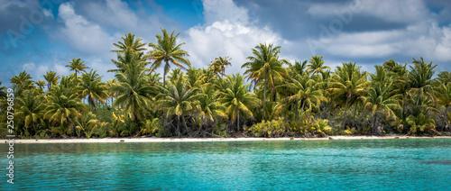 Fotografia Panoramic view of beautiful tropical palm tree island.