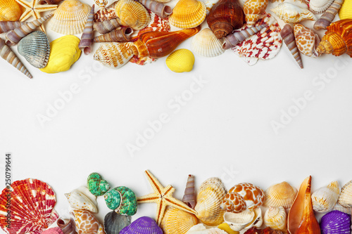 Composition of exotic seashells Fototapet