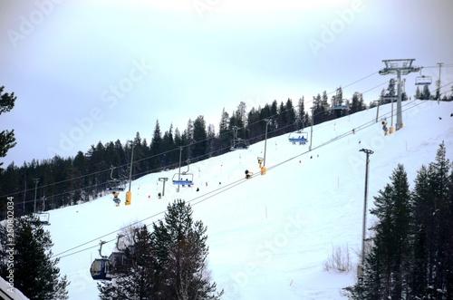 Photographie  Levi : Pistes de ski alpin (Nord de la Finlande)